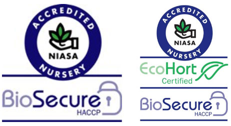 Bio Security Rootstock Services